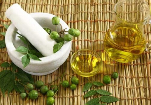 huile de neem croissance cheveux